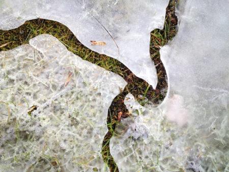 Ice snake photo by Jay Snively